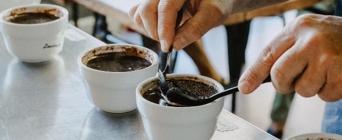 O Que é Uma Degustação de Café, e Como Organizar Uma cover image